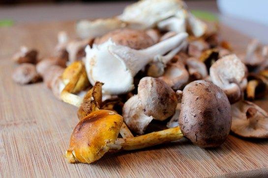 wild mushroom and tatsoi bowl mushrooms
