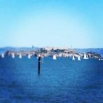 sail alcatraz