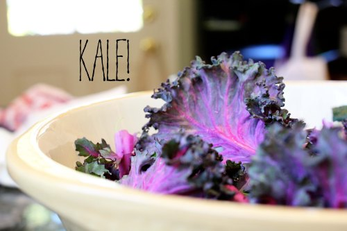 kale caesar with toasted panko and olive oil tuna - kale leaves